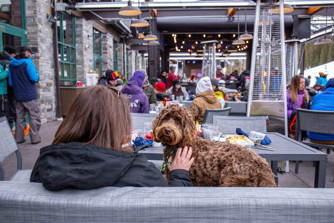 A woman sits with her dog facing a restaurant full of people at Downhill Duke's at Copper Mountain.